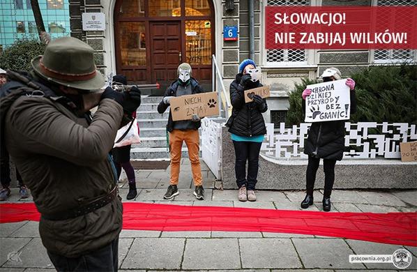 Słowacjo, nie strzelaj do nas! – protest w obronie wilków pod Ambasadą Republiki Słowackiej w Warszawie